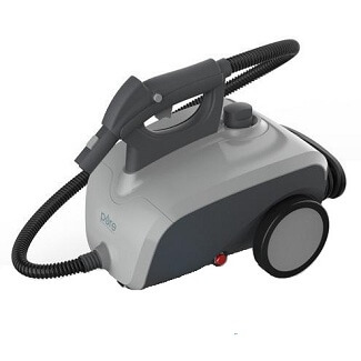 High power steam cleaner for removing bugs