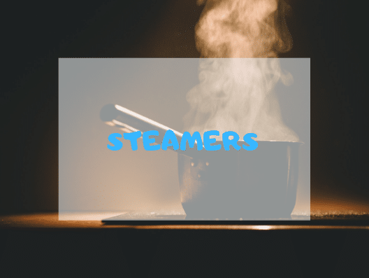 Best Steamers of 2021 Reviews