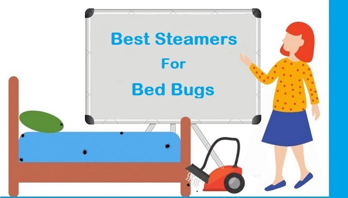 Best Steamers for bed bugs