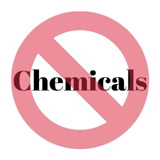 Steam Cleaners vs Chemicals which is better to get rid of bed bugs