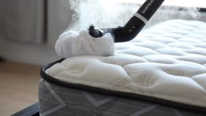 Top rated steam cleaner for killing bed bugs